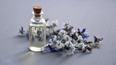 Belles plantes: les nouvelles herboristeries